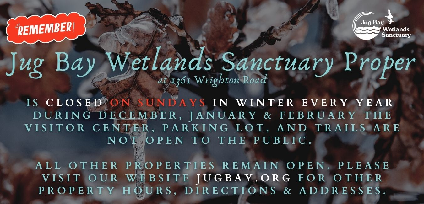 JBWS Closed Sundays WINTER